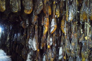 02-jamon-bellota-tunel-gc